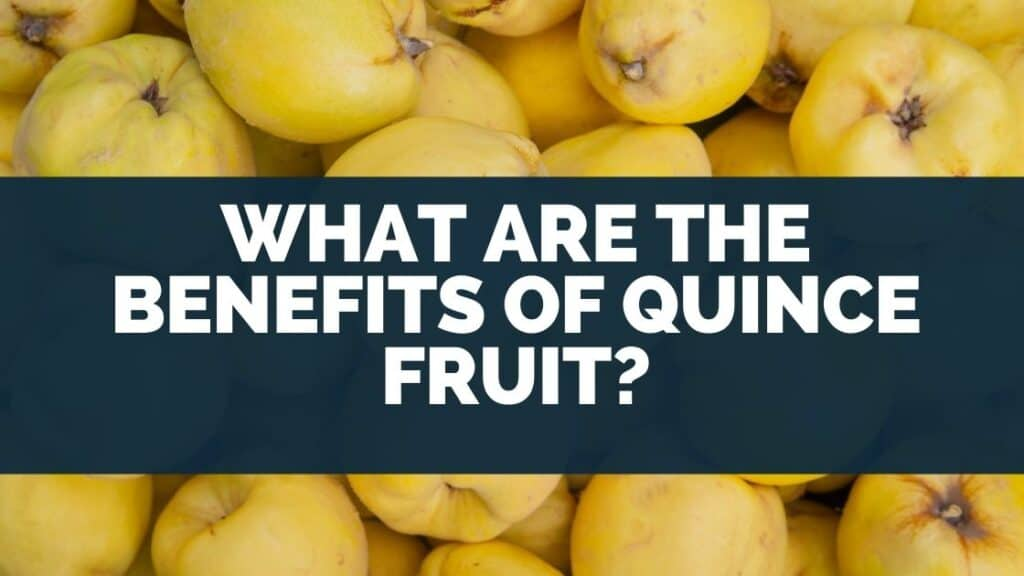 What Are the Benefits of Quince Fruit