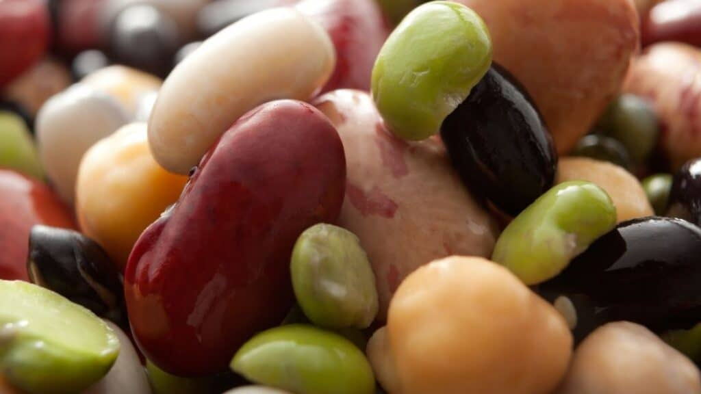 What Bean Is Poisonous When Raw