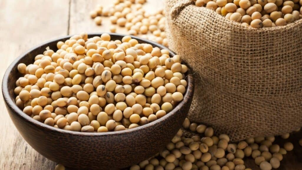 What Beans Have the Lowest Glycemic Index