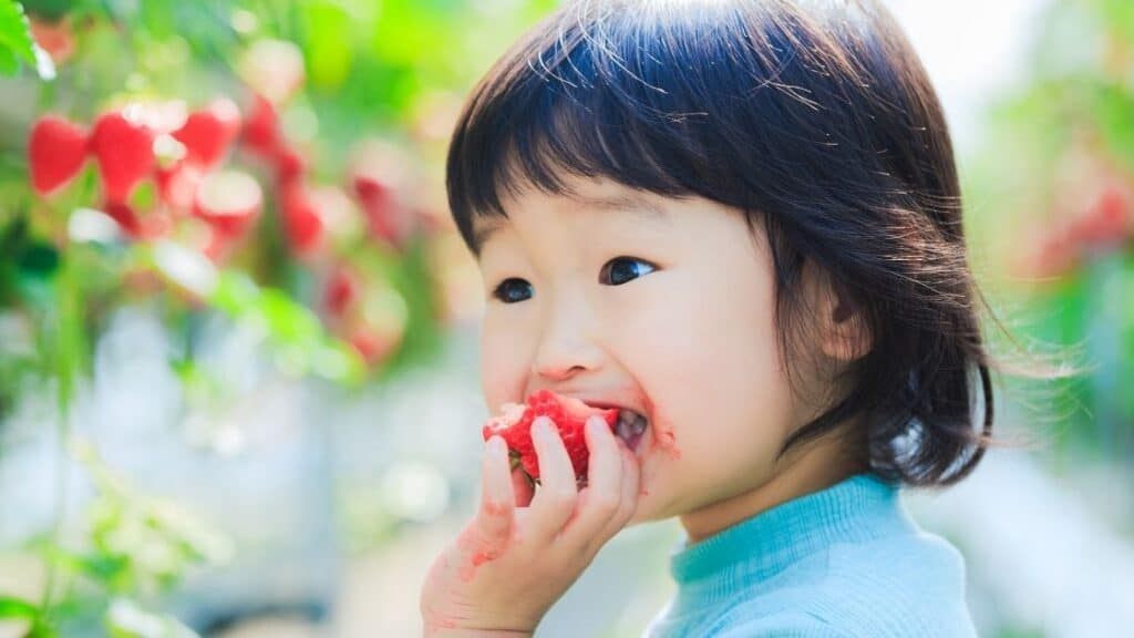 What Happens if You Eat Strawberries Everyday