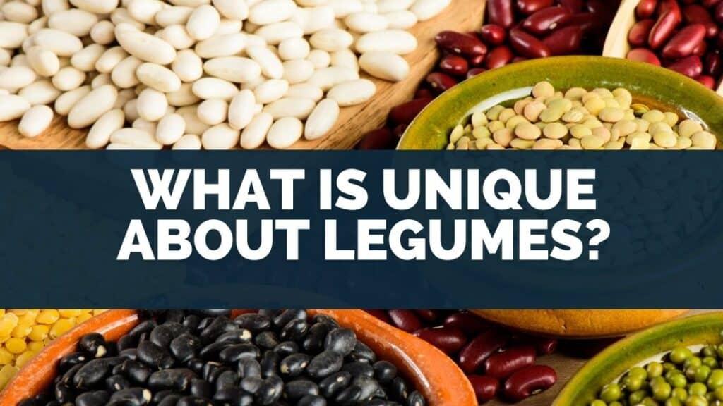 What Is Unique About Legumes