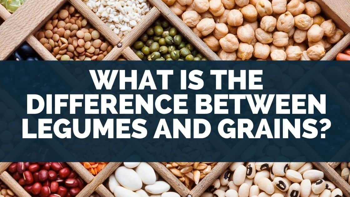 What Is the Difference Between Legumes and Grains