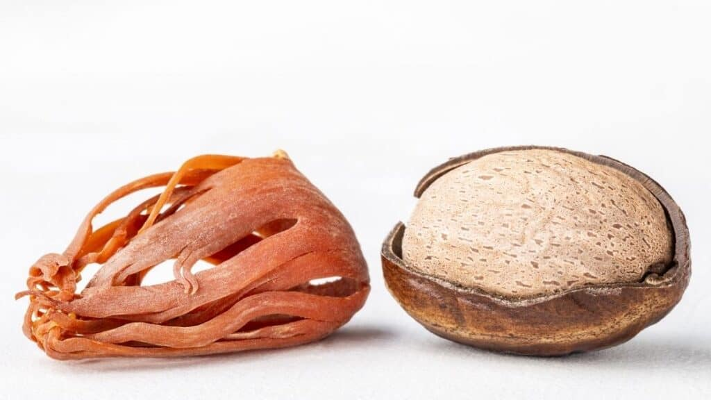 What Is the Difference Between Nutmeg and Mace