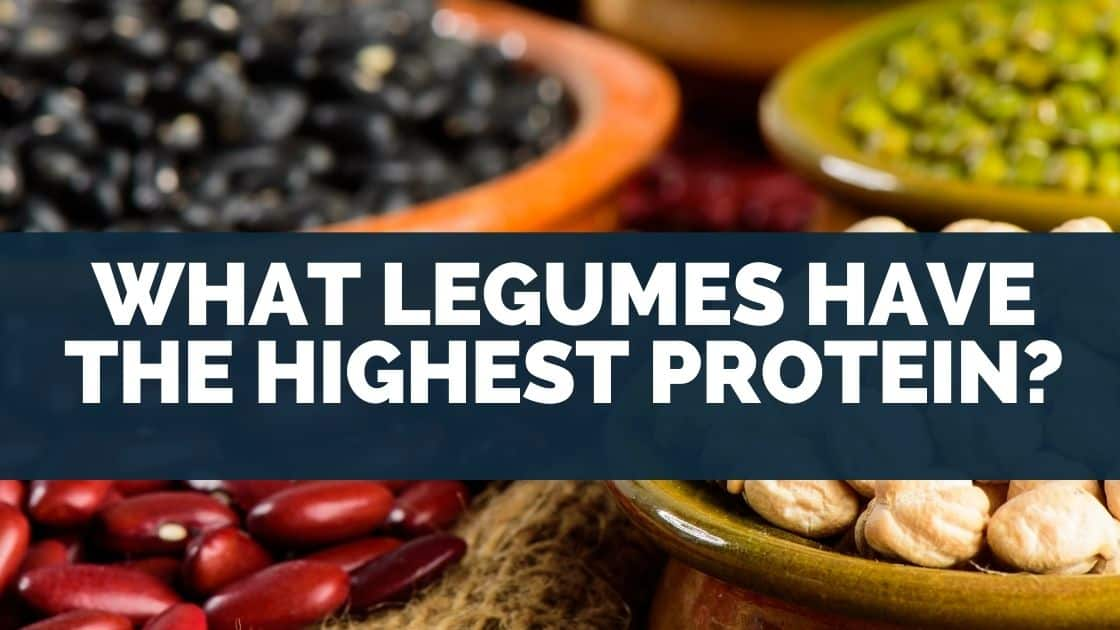 What Legumes Have The Highest Protein