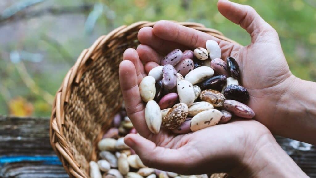 What to put on beans to prevent gas