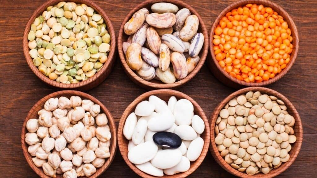Which Foods Are Legumes