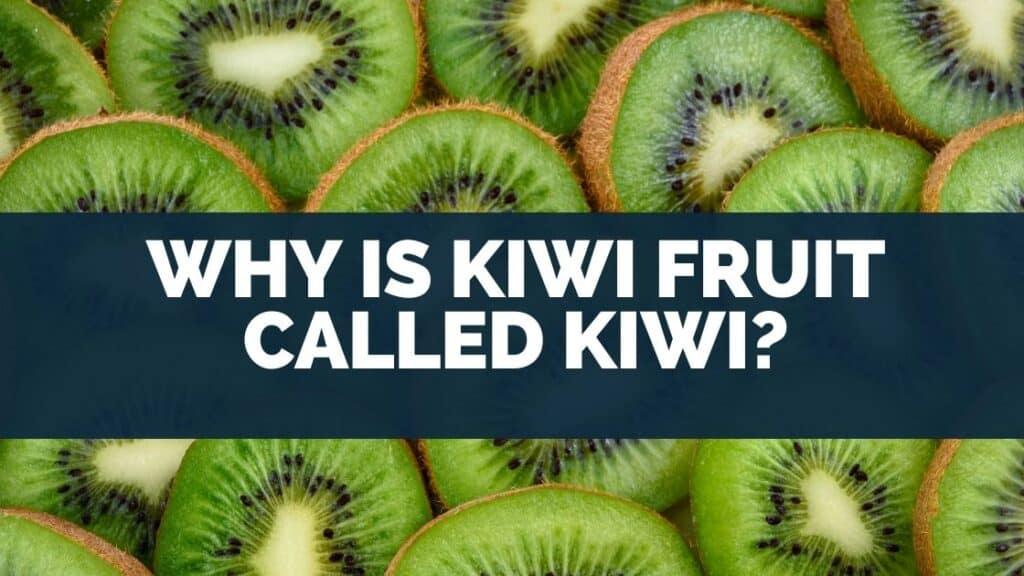 Why Is Kiwi Fruit Called Kiwi