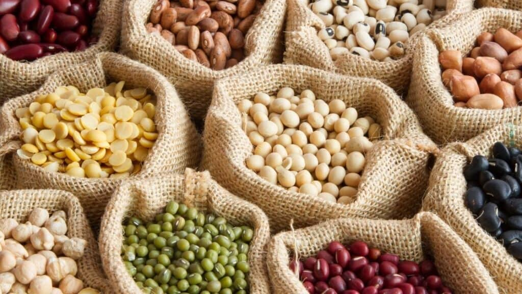 Why Legumes Are Important Crops