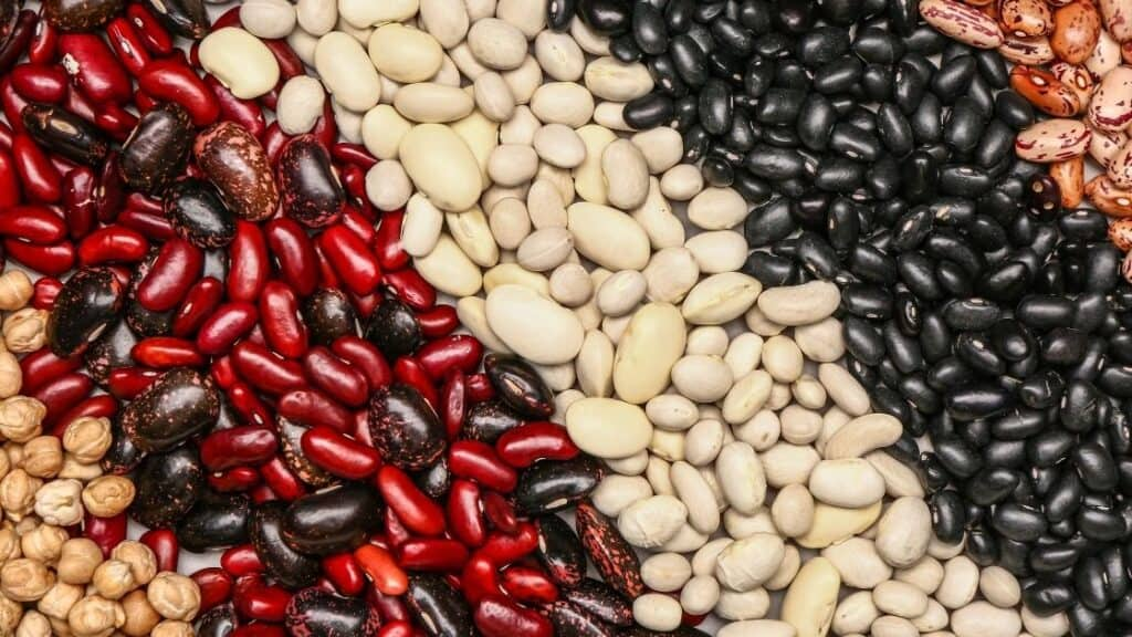 Why are raw legumes poisonous