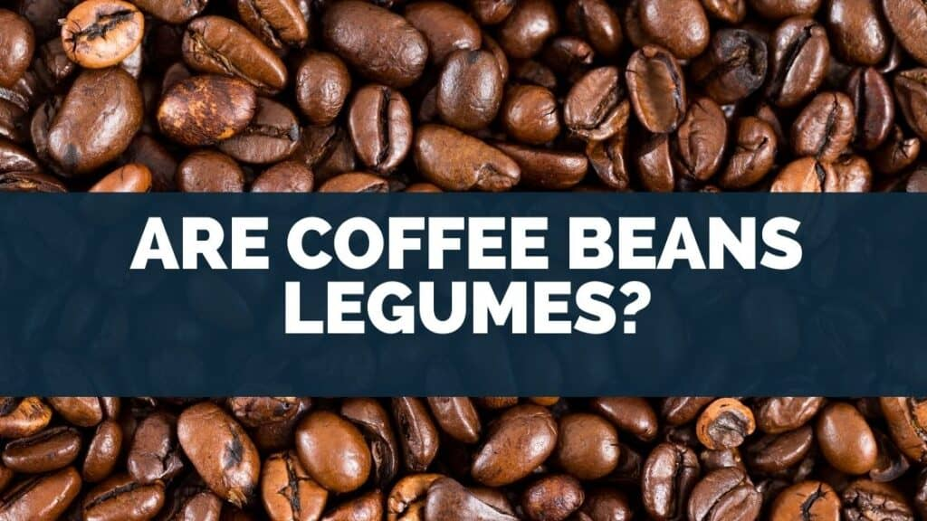 Are Coffee Beans Legumes