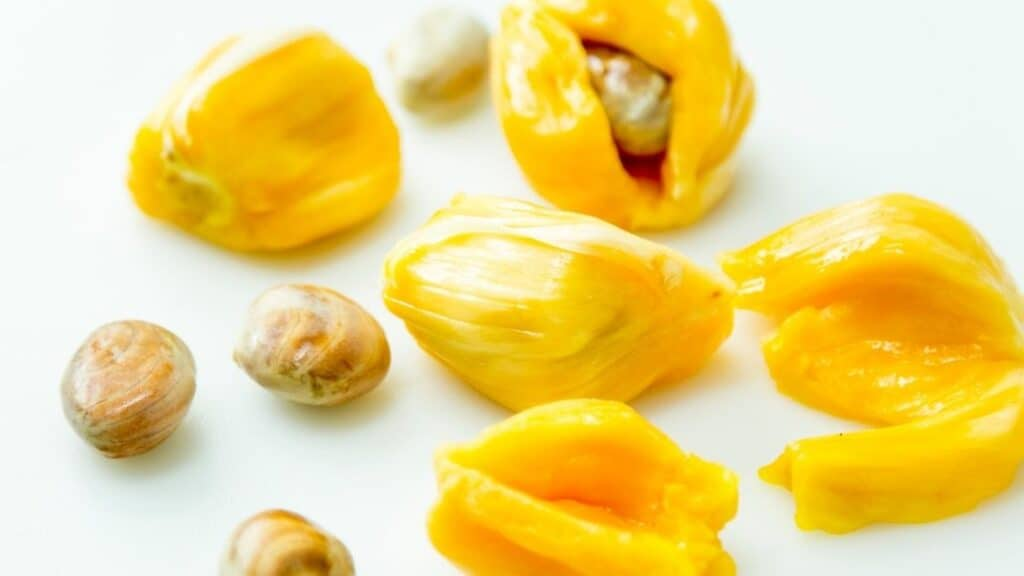 Are the Jackfruit Seeds Poisonous