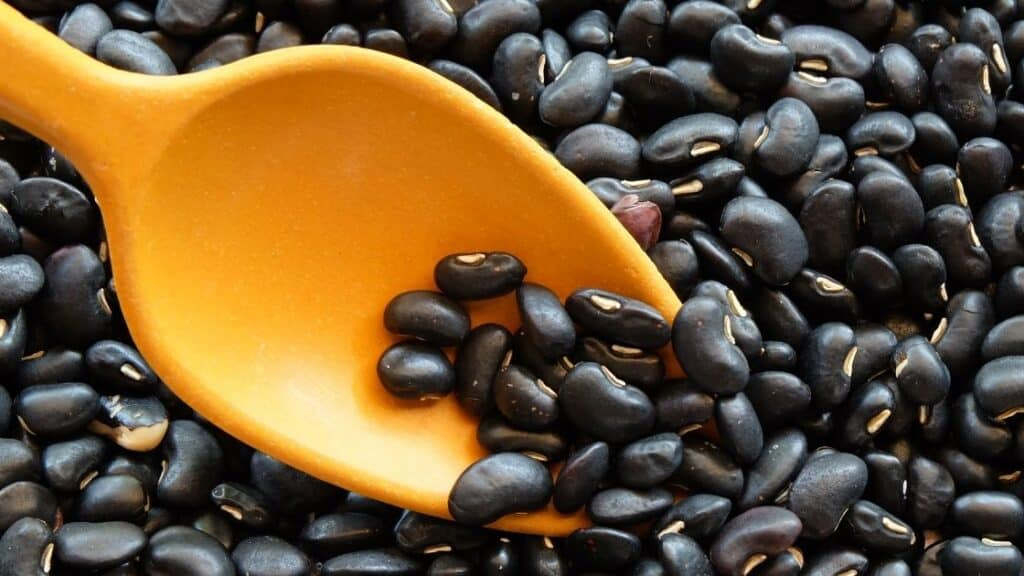 Can I eat black beans every day