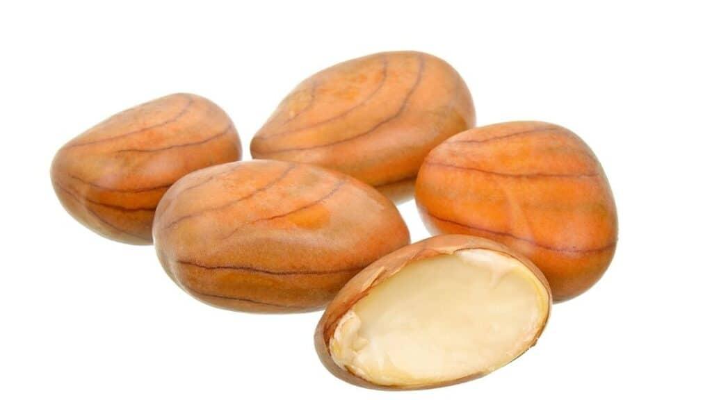 Can You Eat Jackfruit Seeds Raw