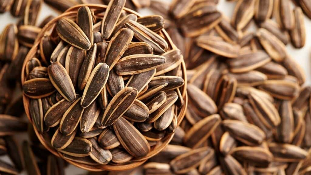 How Are Sunflower Seeds Good for You