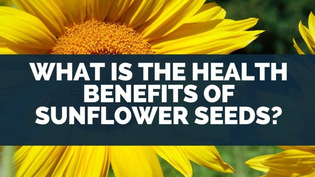 What Is the Health Benefits of Sunflower Seeds