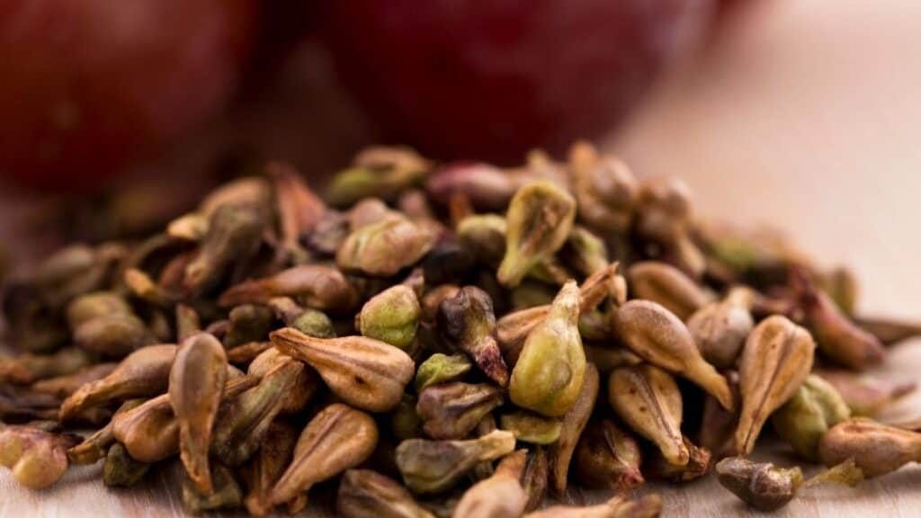 What are the benefits of eating grape seeds