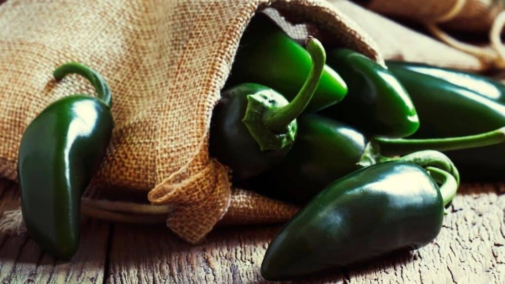 Why are my jalapenos not spicy