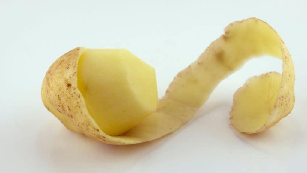 Are Potato Skins Fattening