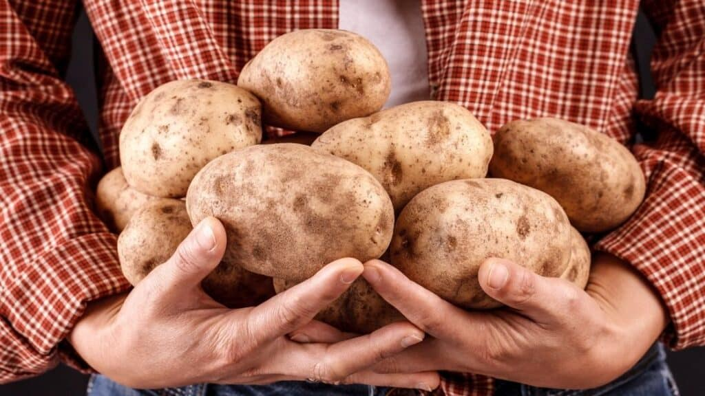 Are Potatoes Healthier Than Grains