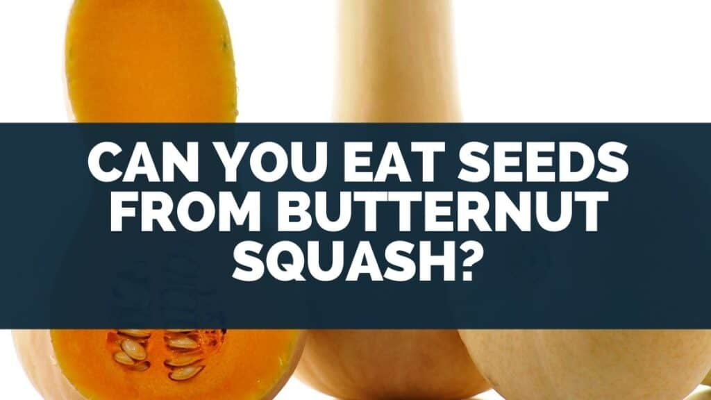 Can You Eat Seeds From Butternut Squash