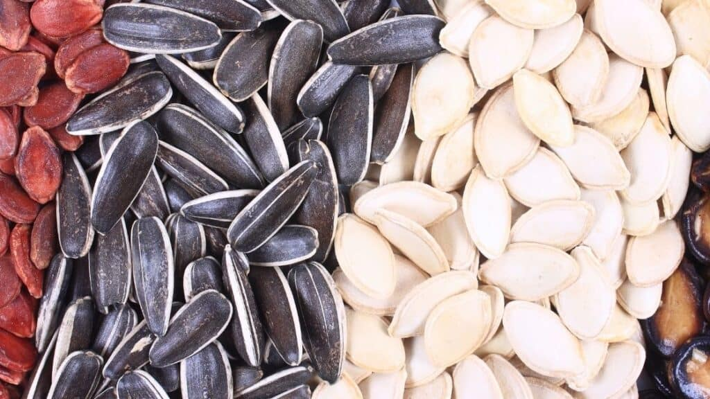 Do Raw Seeds Have More Carbs That Roasted Seeds