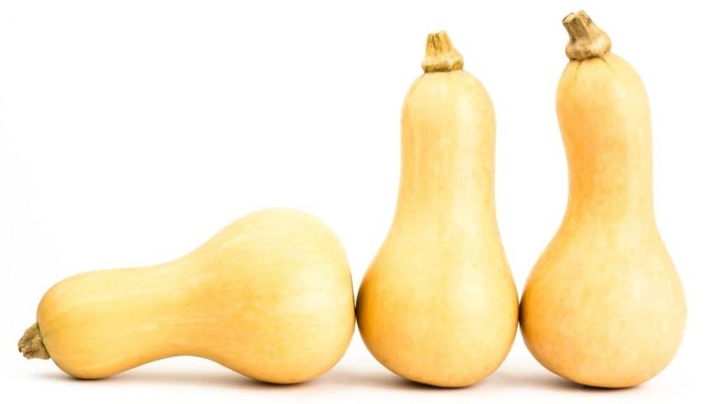 Does Butternut Squash Have A Lot Of Carbs