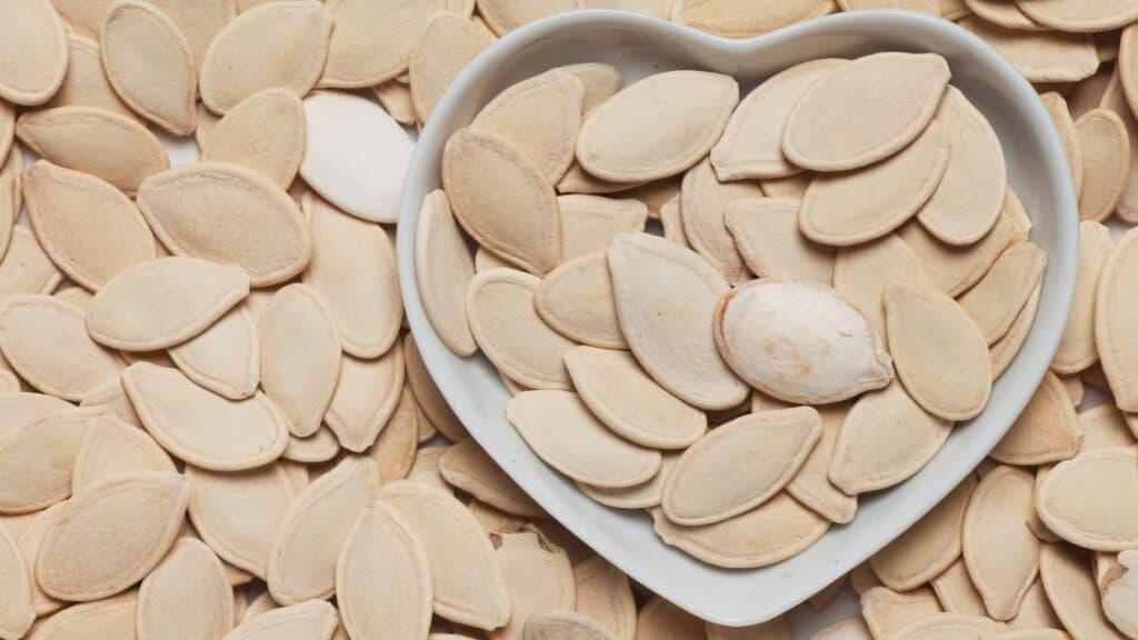 Does Pumpkin Seeds Have Protein