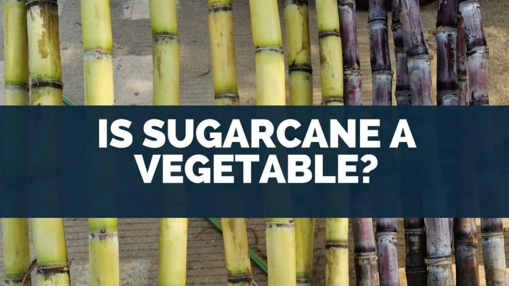 Is Sugarcane Healthy to Eat