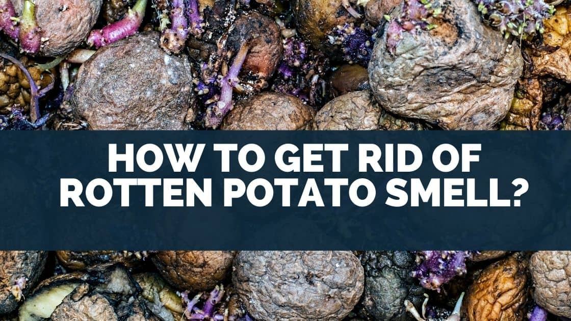 How to Get Rid of Rotten Potato Smell