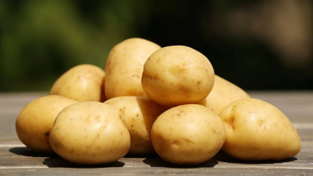 What Is Potato Poisoning